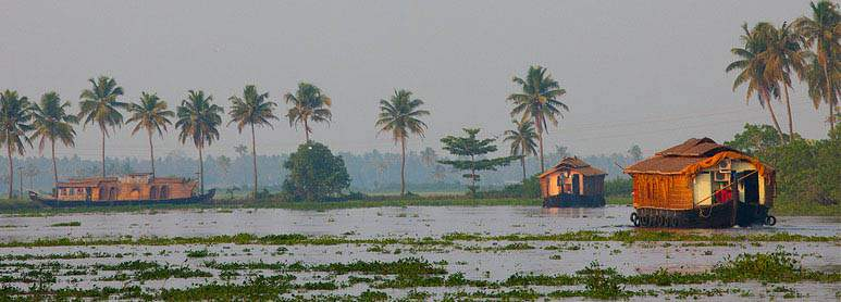 Kumarakom Kerala honeymoon places