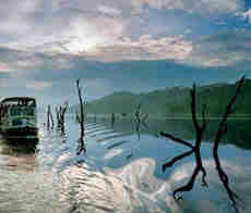 Thekkady -Kerala Tour Packages with Price