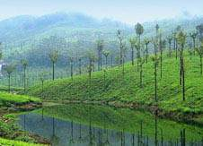 Valappari Kerala honeymoon places