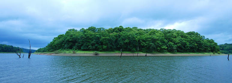 Thekkady Kerala Backwater Tour Packages